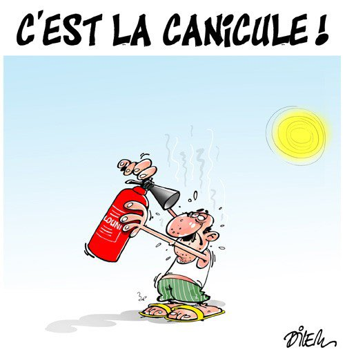 """Spécial """"ALGÉRIE : C'EST LA CANICULE !..."""" - Image n° 2/2 !..."""