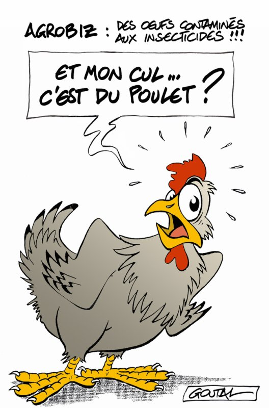 """Spécial """"Le scandale des ½ufs contaminés pourrait toucher la France..."""" - Image n° 2/2 !..."""
