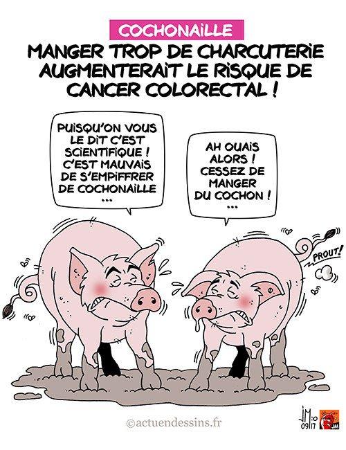 """Spécial """"Charcuterie et cancer colorectal.."""" - Image n° 2/2 !..."""