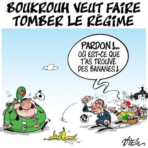"""Spécial """"La charge de Boukrouh contre le président Bouteflika..."""" - Image n° 2/3 !..."""