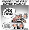 """Spécial """"Perpétuité pour Ratko Mladic..."""" - Image n° 2/2 !..."""