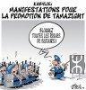 """Spécial """"Manifestation pour la reconnaissance d'un état Kabyle..."""" - Image n° 2/2 !..."""