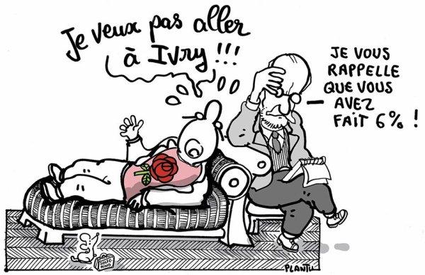 """Spécial """" Le PS déménage et adopte un chat..."""" - Image n° 3/3 !..."""