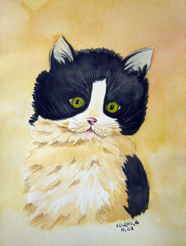 aquarelle chaton pas pas revue peinture facile brigit 39 mania. Black Bedroom Furniture Sets. Home Design Ideas