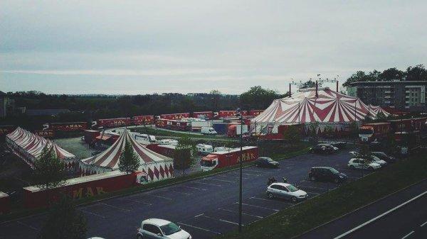 cirque AMAR  2016