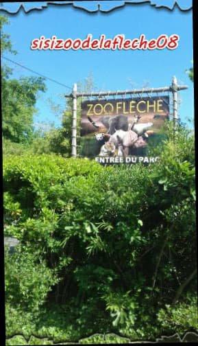 présentation entrée parc zoo de la flèche+yang et sangha les 2 panda roux