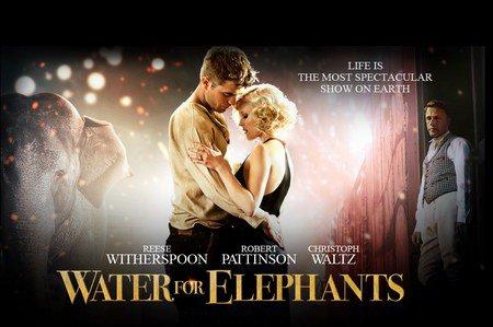 De l'eau pour les éléphants!