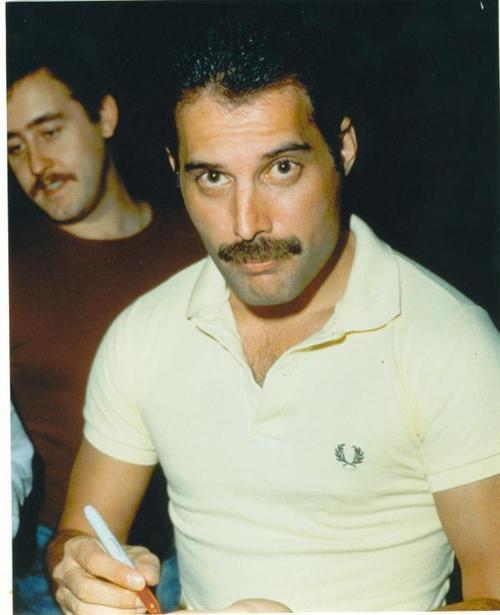 Freddie Mercury my love!! *-* I'm crazy for him!!!!!!!