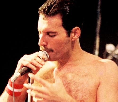 Je ne sais pas pour vous ... mais pour moi Freddie is just perfect *-* ♥♥♥