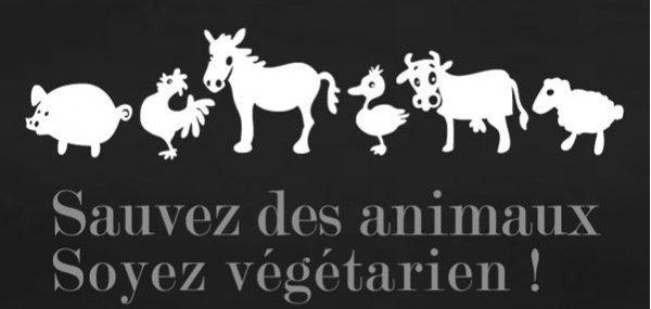 Je suis végétarienne à partir de MAINTENANT!