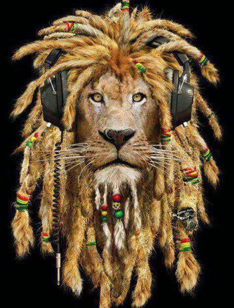 lions de jah...