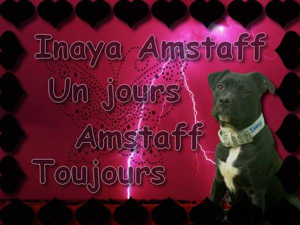Ma Staff Inaya ♥