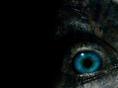 bienvenue dans un monde ouvert sur le fantastique et l'horreur un blog dédié a ma passion le cinéma ici que votre oeil soit hagard et admiratif...faite tourner la bobine surtout ne casser pas la bande et aller jusqu'au bout du frisson et au fil de votre visite laisser moi trace de votre passage même par une marque de sang a défaut d'ancre