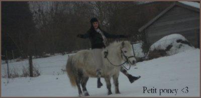 Holiday , mon petit poney blanc . <3