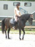 Photo de cheval-girl25