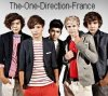 The-One-Direction-France