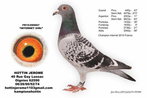 La colombophilie Belge