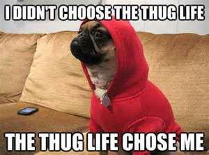 THUG LIFE DOGG DOGG FATHER<3