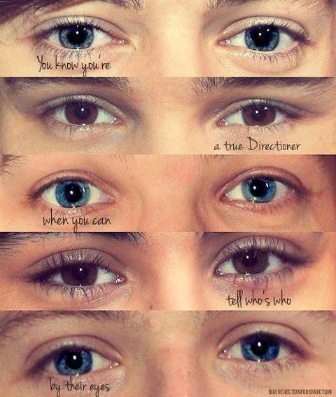 Tu c'est que tu est une vrai directioner quand tu arrive a reconnaître les yeux des One direction