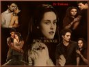 Photo de Lion-Lamb-Bella-Edward
