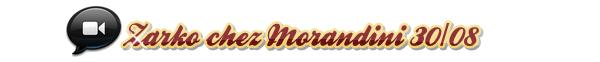 """✿ CentralZarkoZelko.skyrock.com ___ » Zarko sur NRJ12 dans """"Les Anges de la Télé"""" le 29/08 et sur le plateau de Morandini le 30/08, Le live du 31 août + Coins vidéos"""