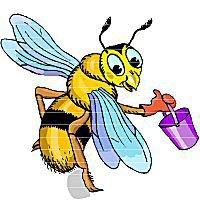 Une de nos spécialités : les produits de la ruche
