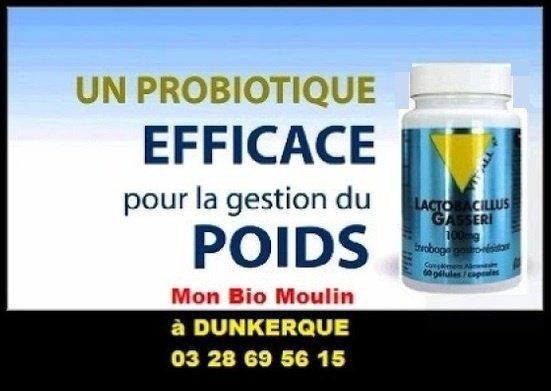 Lactobacillus Gasseri à Dunkerque - Mon Bio Moulin à Dunkerque