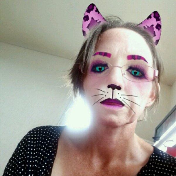 En   chat  rose