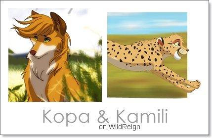 Présentation de Kopa et Kamili !