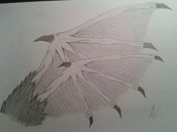 Dessin : Aile demi démon-ange
