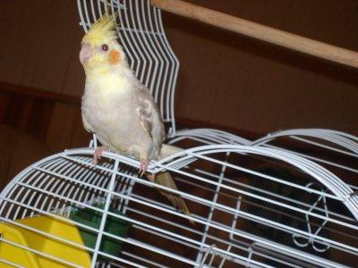 Ma petite princesse :)