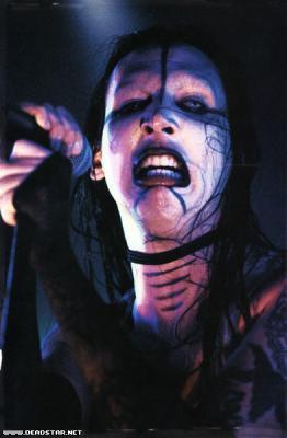 """‡ Retour sur la tournée """"Dead To The World ‡"""