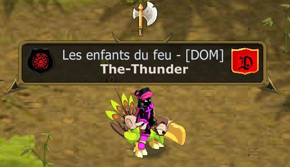 Présentation de la Team Thunder