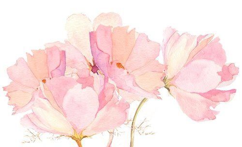 Ne remets pas à demain ce que tu dois faire aujourd'hui... Le jardin de roses est aujourd'hui plein de fleurs, mais demain, quand tu voudras cueillir une rose, il ne pourra peut-être pas t'en offrir une seule.