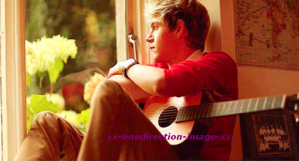 Image coup de coeur Niall Horan