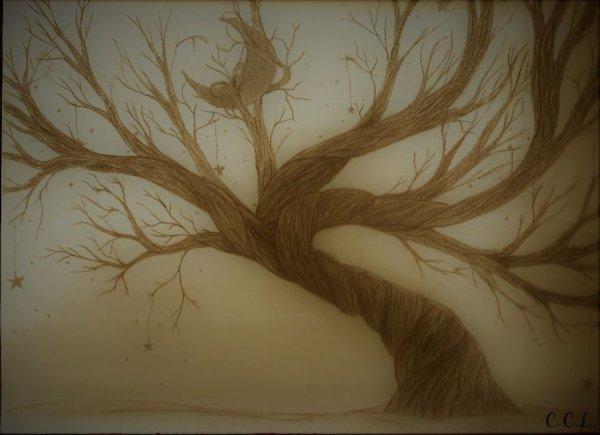 Le ciel sur les branches