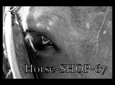 Horse-SHOP-67.sky''