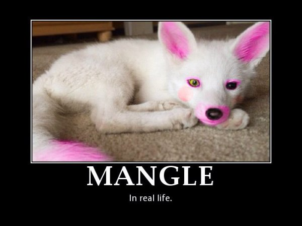 manguel