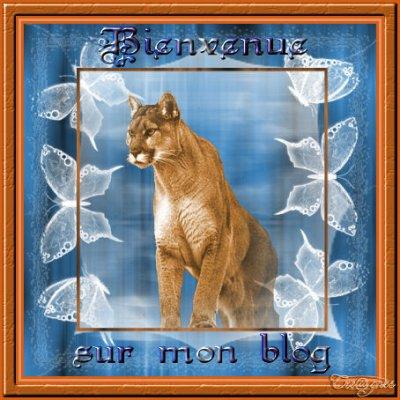 je vous souhaite une bonne visite sur mon blog ...