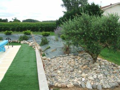 Mon olivier blog de babou472 for Cailloux rocaille