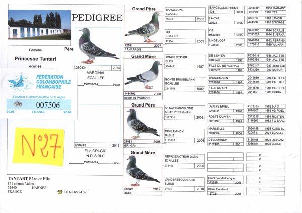 N°27 PRINCESSE OFFERTE PAR TANTART P&F N°7506/16
