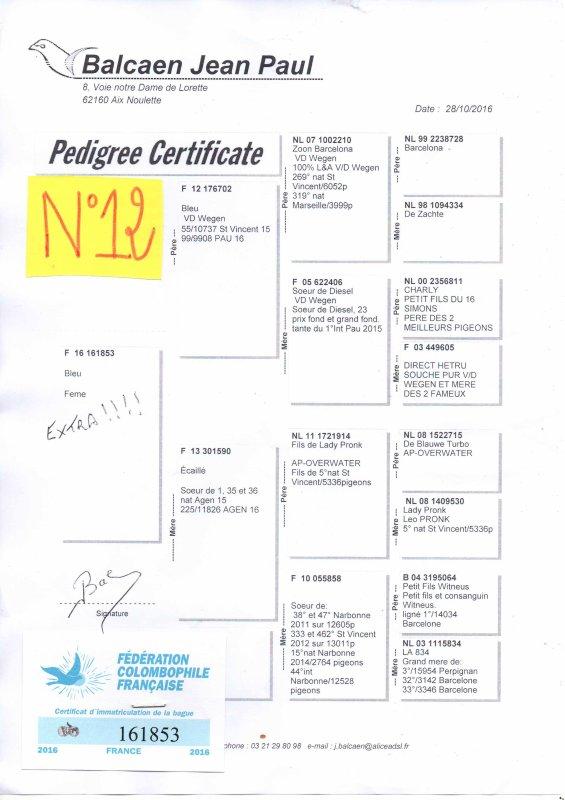 N°12 PRINCESSE OFFERTE PAR JEAN PAUL BALCAEN N°161853/16