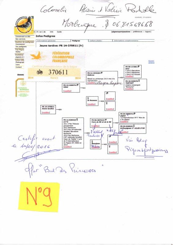 N°9 PRINCESSE OFFERTE PAR ALAIN ET VALERIE POCHOLLE N°370611/14
