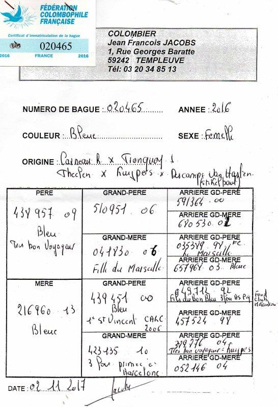 PRINCESSE N°7 BLEUE JACOBS JEAN FRANCOIS 20465/16