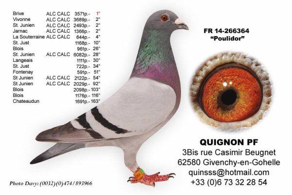 PRINCESSE N°22 ECAILLEE QUIGNON PERE ET FILS 264560/17