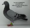 Après le championnat des groupements de la 1ere région les pigeons du pigeonnier départemental 62 seront vendus