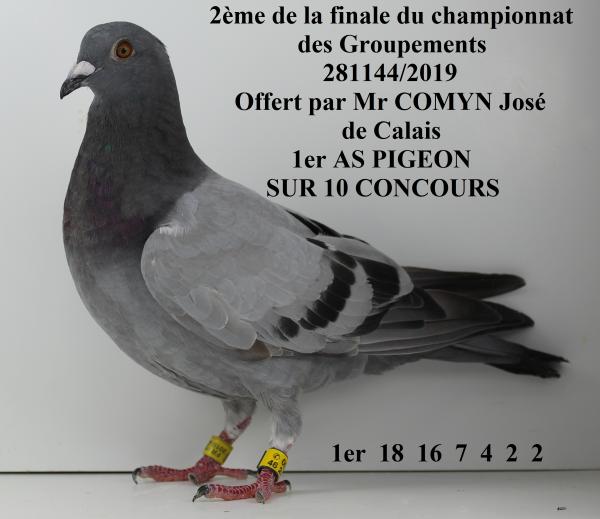 Voici le podium de la dernière course sur CHATEAUDUN 282 Km. Ces pigeons seront vendus dimanche 6 Octobre au local de la société d'Avion à 15h00, rue de la Targette. Une prévente débutera demain sur pigeoninfo.skyrock.com. La remise des prix aura lieu lors du congrès régional