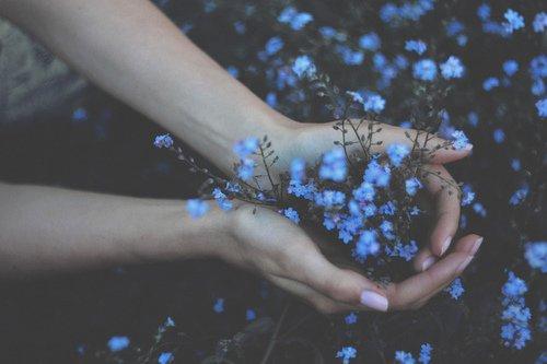 La vie n'est qu'une longue perte de tout ce qu'on aime.