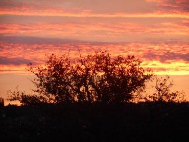 Le plus beau lever de soleil du monde <3 ( chronique )