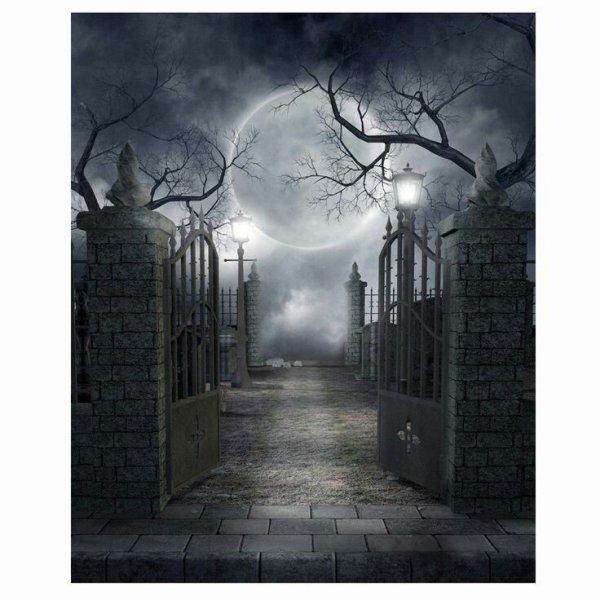 Fiction n°1 (de Wendy) : Avis de sorcière. CHAPITRE 13.